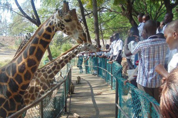 Siyabona Africa: Haller Park