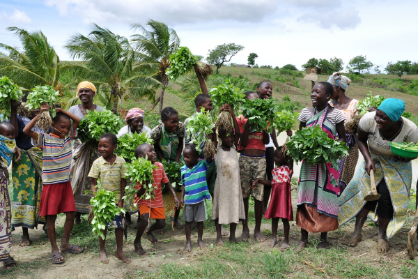 How Mobile Technology Could Provide Food Security for Rural African Communities